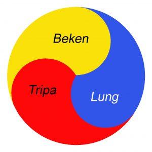 prinzipien_tibetische_medizin_lung_tripa_beken